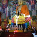 03807 Darjeeling: Inside the Yogachoeling Gompa at Ghoom